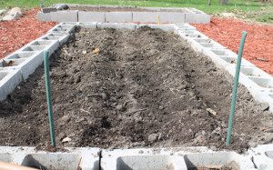 cover the potatoes in a mound of dirt
