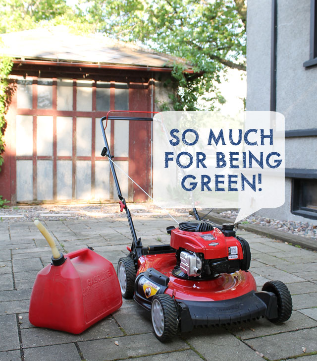 Toro Gas Mower on This American House