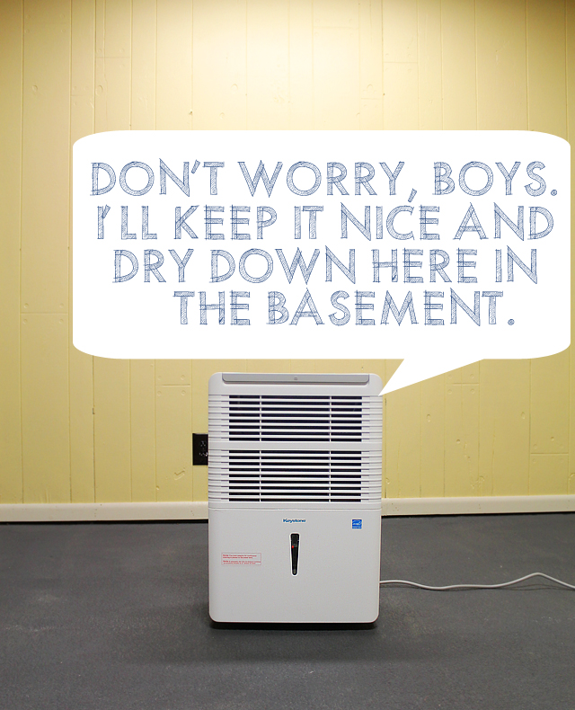 How a Dehumidifier and Shop Vac Became Our New Favorite Things