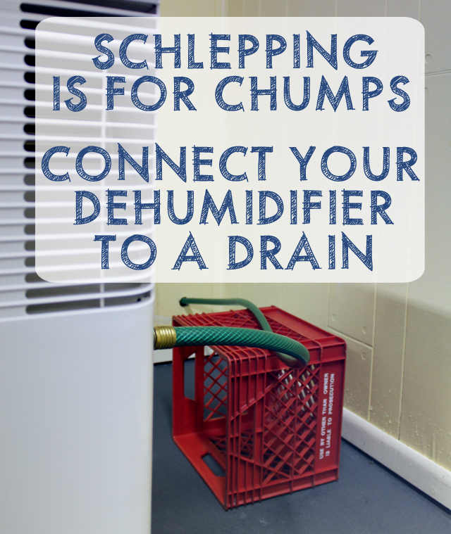 Schlepping Sloshing Water Buckets is for Chumps! Connect Your Dehumidifier to a Drain | This American House