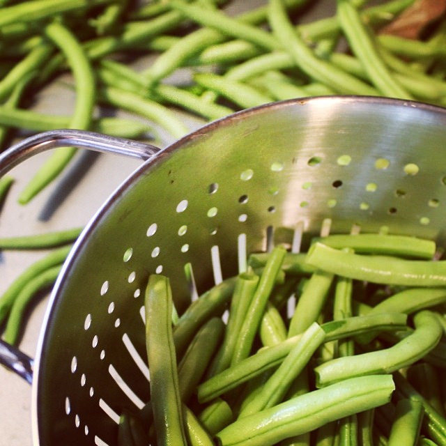 How to Freeze Fresh Green Beans | This American House