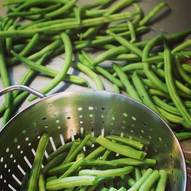 How to Freeze Green Beans | This American House