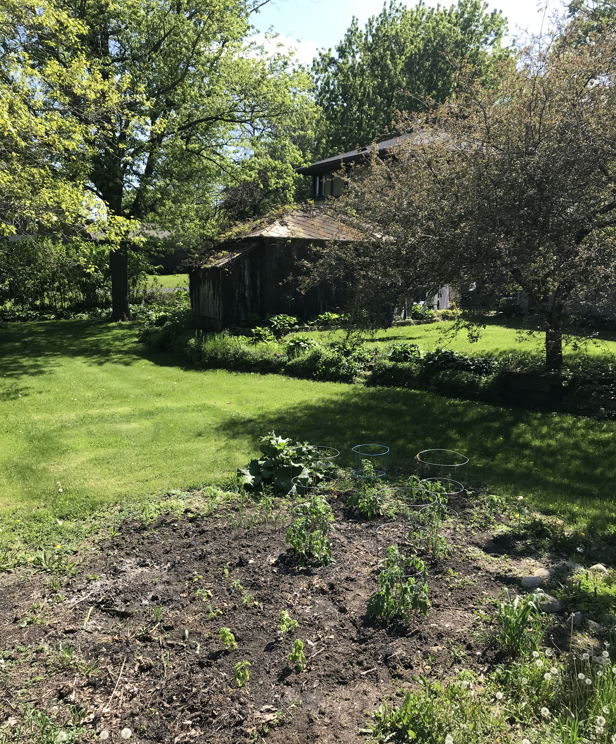 gardening at an American System-Built